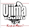 "<strong>Scope, establish and produce Healthy Living Show on Bristol's Radio Ujima for BME audience</strong><br>""Naomi produced the weekly Healthy Living Show for over a year on <a title=""Radio Ujima"" href=""http://www.ujimaradio.com/"" target=""_blank"">Ujima</a>, got brilliant guests every week, kept me informed and organised the whole show, pre-records and promotion. Without her there would have been no show!"" Mandy Shute, Presenter, Healthy Living Show"